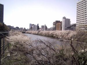 飯田橋・神楽坂で出張マッサージを